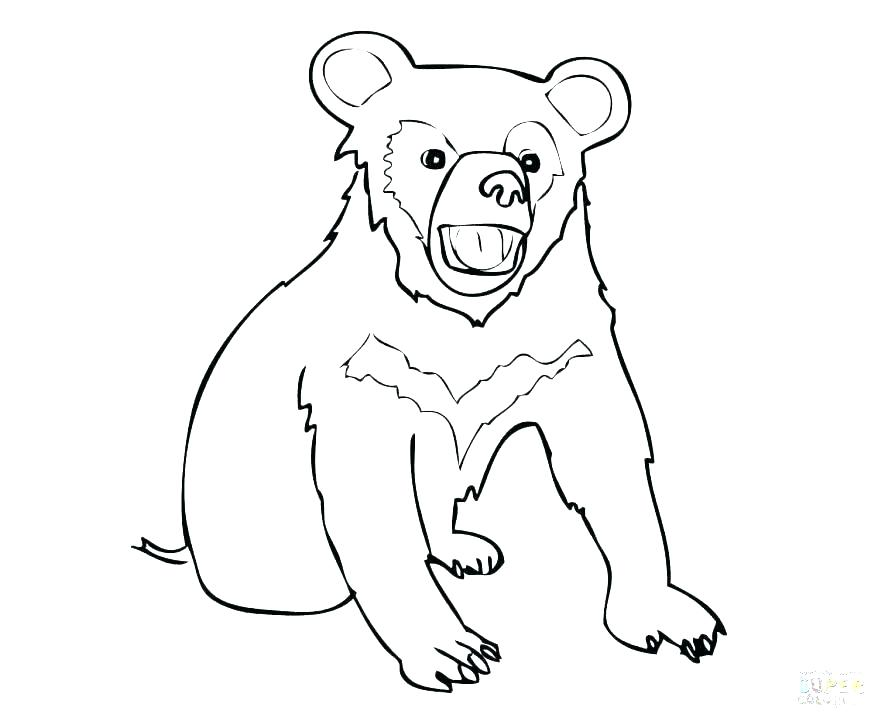 878x721 Black Bear Coloring Pages