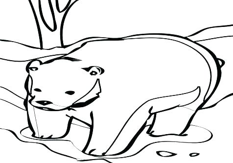 476x333 Black Bear Coloring Pages Black Bear Coloring Page Black Bear