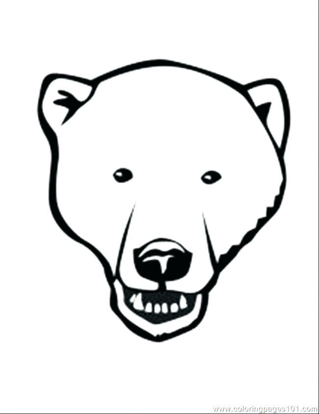650x844 Polar Bear Coloring Sheet Polar Bear Color Page Polar Bear Face