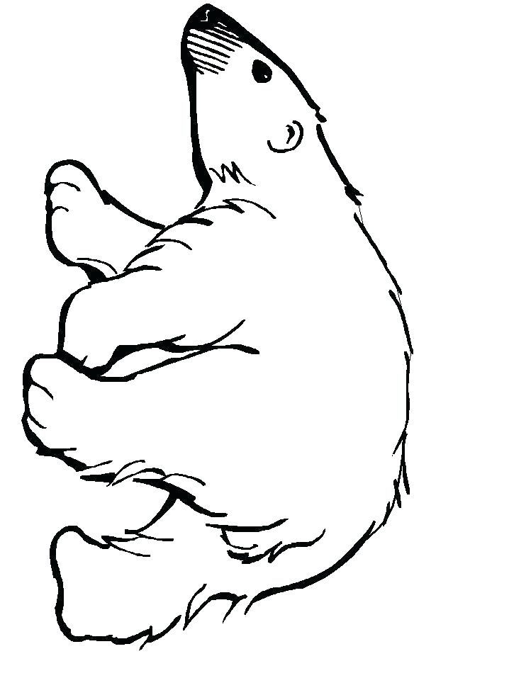 718x957 Coloring Bears Bear Family Colouring Pages Polar Coloring Bears
