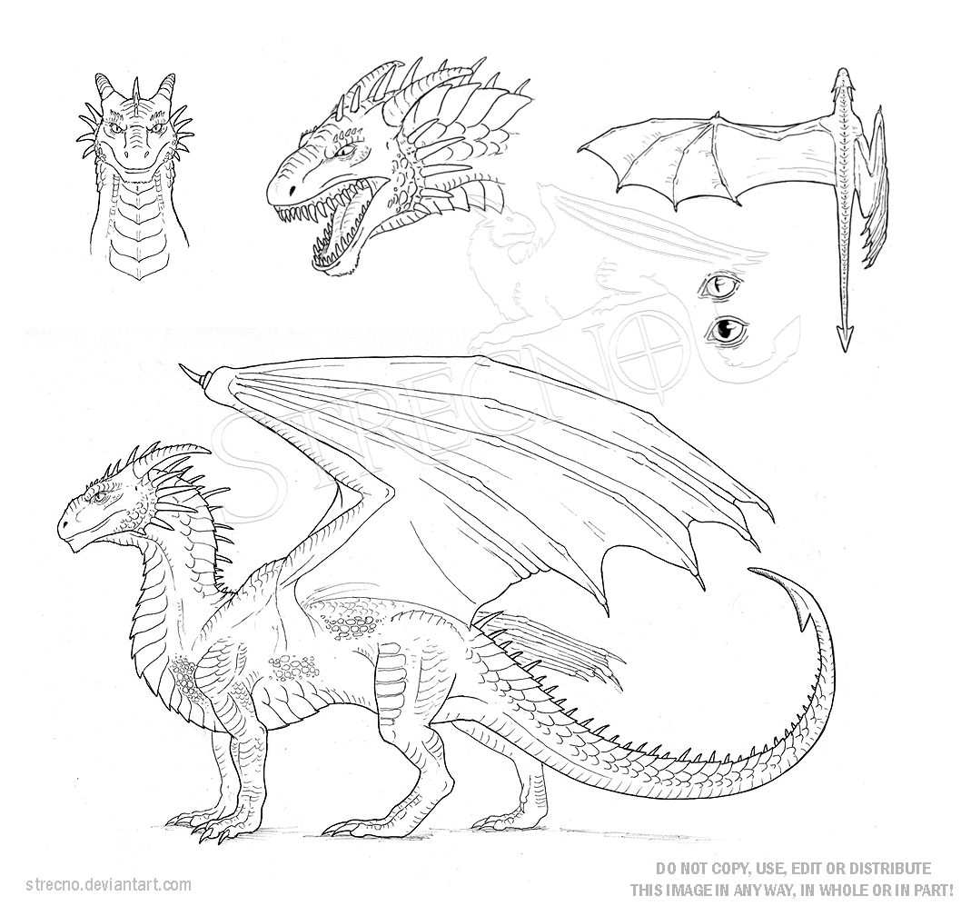 Bearded Dragon Coloring Page