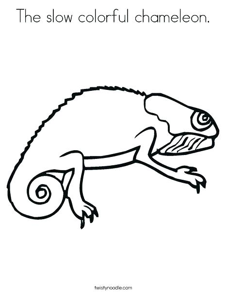 468x605 Bearded Dragon Coloring Pages Chameleon Coloring Pictures Bearded