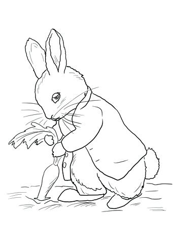 341x480 Beatrix Potter Coloring Pages Potter Free Printable Coloring