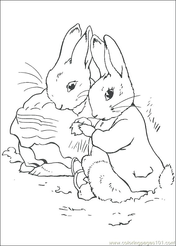 567x794 Best Potter Colouring In Pictures Images On Peter Rabbit Printable