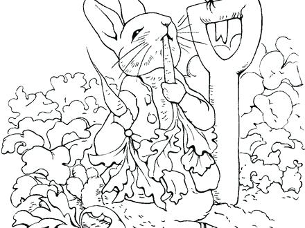 440x330 Peter Rabbit Coloring Pages Coloring Pages Rabbit Peter Rabbit