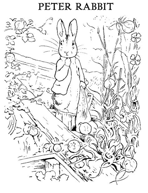 474x618 Peter Rabbit Coloring Page Drawing