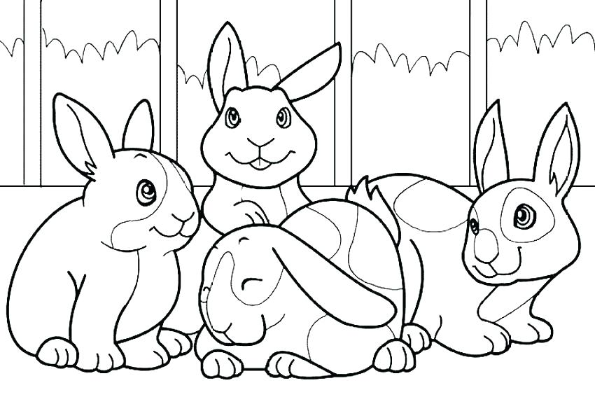850x567 Rabbit Coloring Pages Rabbit Coloring Pages Bunny Coloring Page
