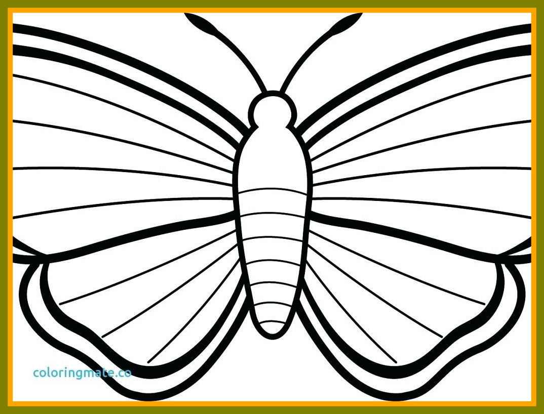 1074x818 Awesome Sensational Butterfly Coloring Pages Image For Beautiful