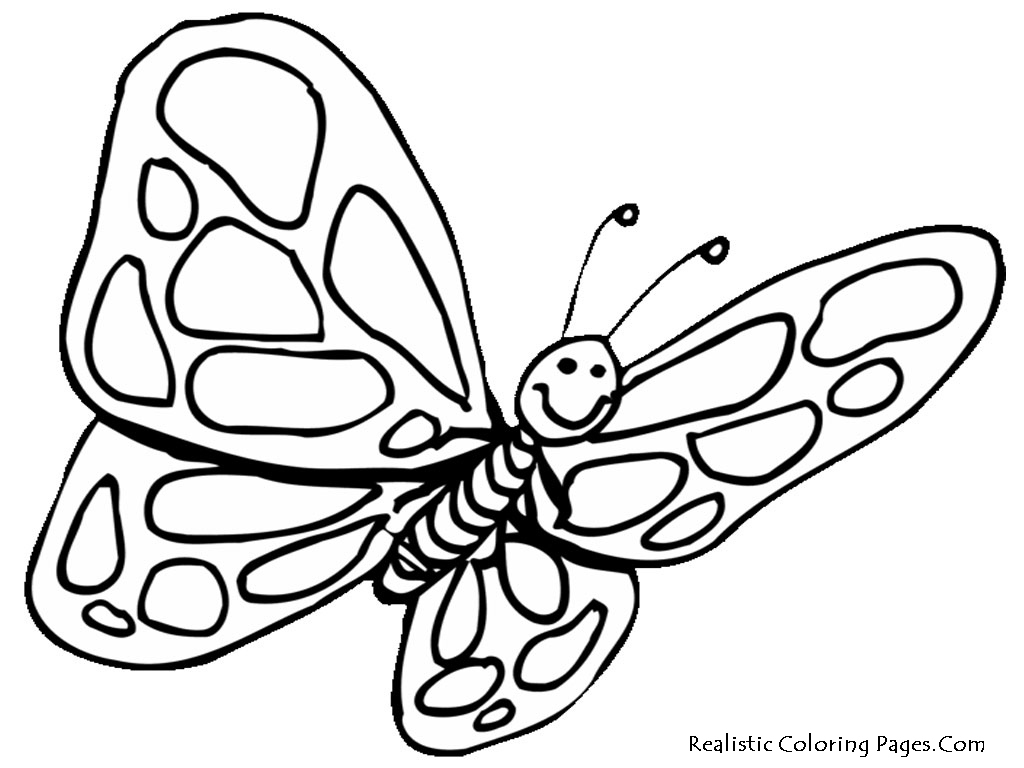 1024x768 Coloring Pages Of Butterflies Beautiful Realistic Butterfly