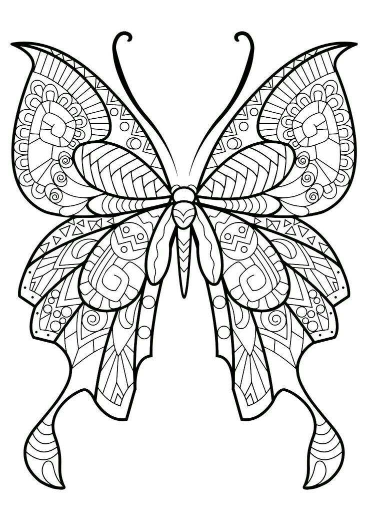 736x1040 Fantastic Beautiful Butterfly Coloring Image Butterfly Coloring