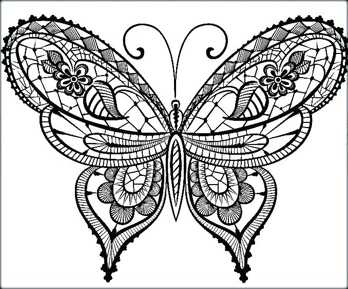 678x562 Free Downloadable Butterfly Coloring Pages Beautiful For Preschool
