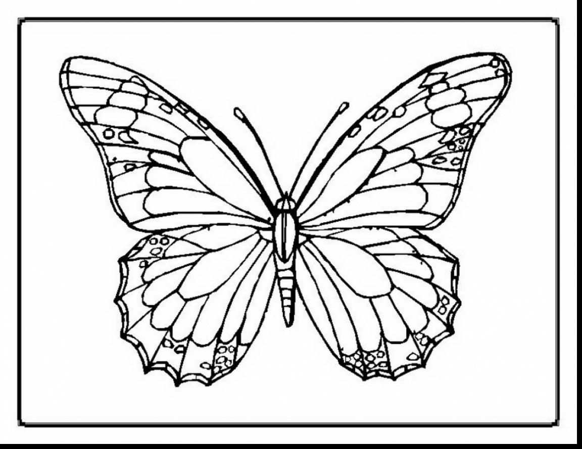 1152x889 Great Beautiful Butterfly Coloring Pages With Page And Free