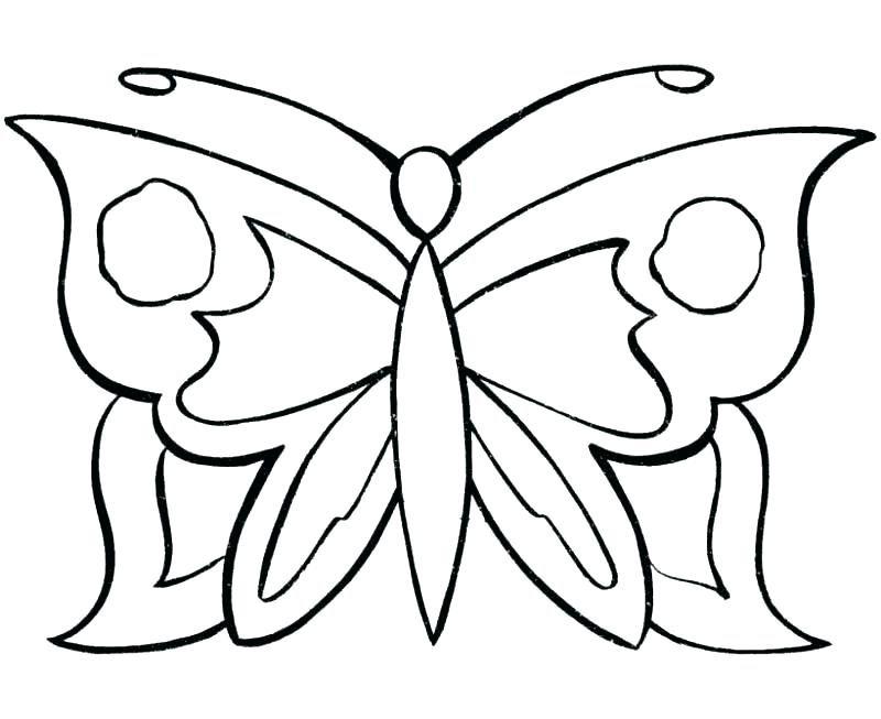 800x653 Butterfly Coloring Pages For Adults