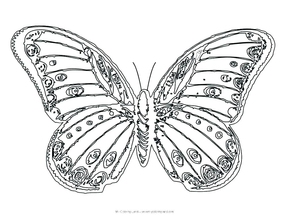 990x765 Butterfly Coloring Pages To Print