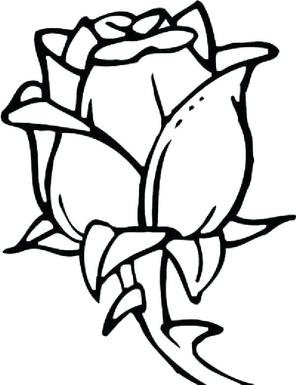 600x780 Coloring Pages Of Flowers Beautiful Flower Coloring Pages Flower