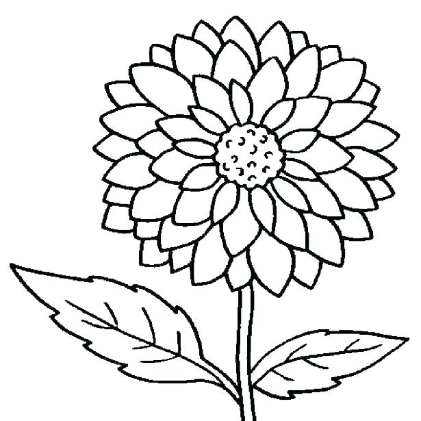615x615 Printable Flowers To Color Printable Flowers To Color Pretty