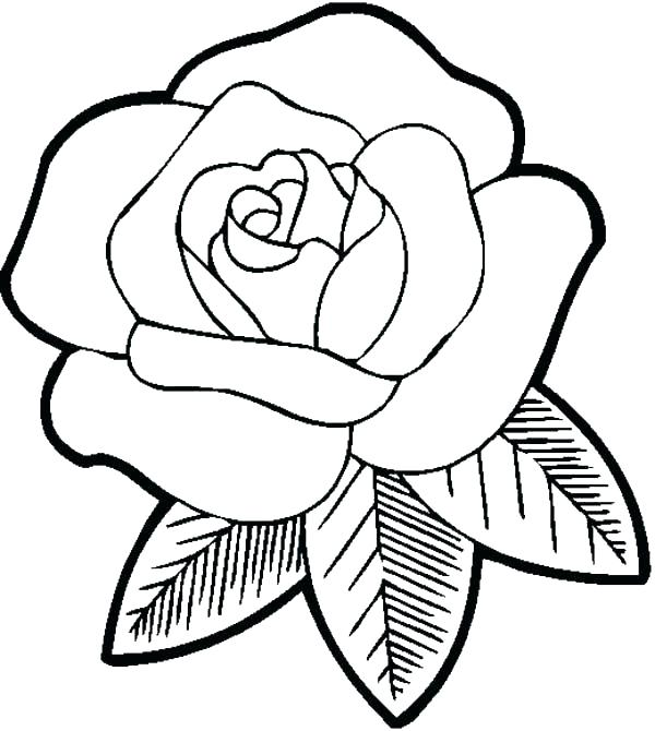 600x670 Roses Coloring Pages Printable Rose Coloring Books And Big Flower