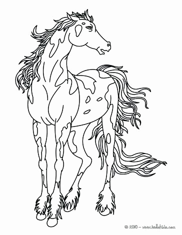 364x470 Coloring Pages For Horses Horse Coloring Pages Beautiful Horse