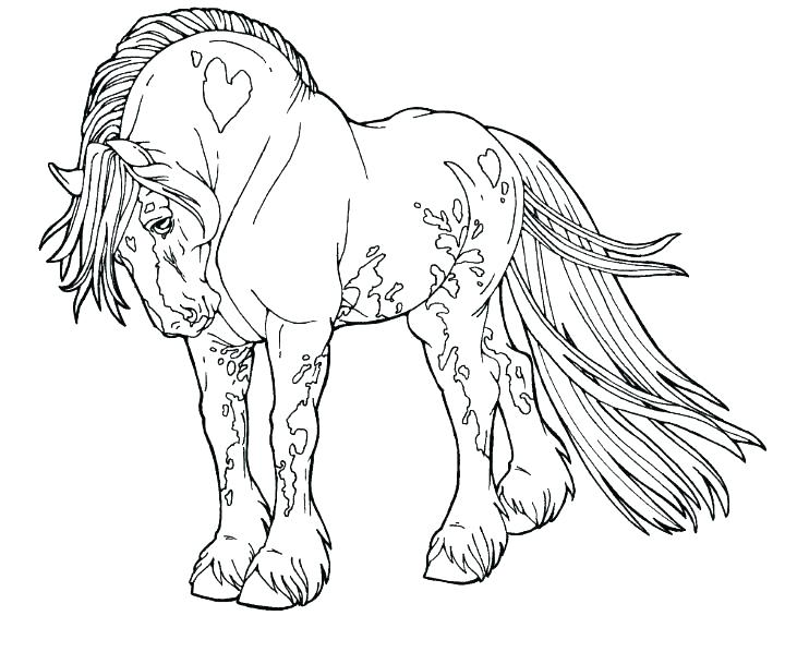 720x598 Two Horses Coloring Pages Two Horses Coloring Page Realistic Horse
