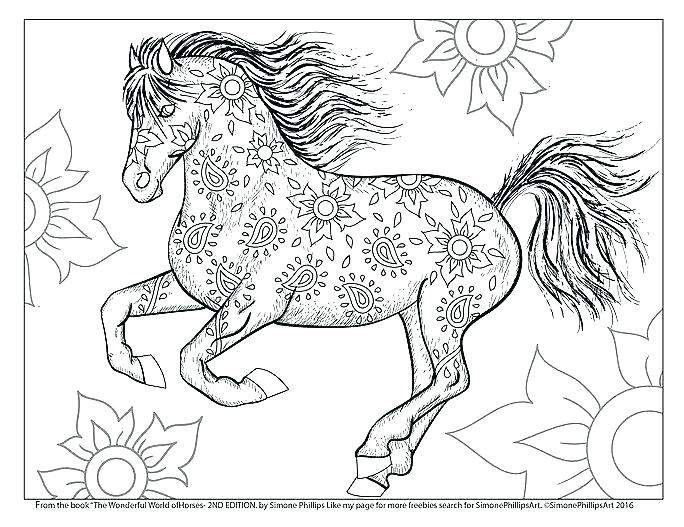 684x527 Coloring Beautiful Horse Coloring Pages For Adults The Wonderful