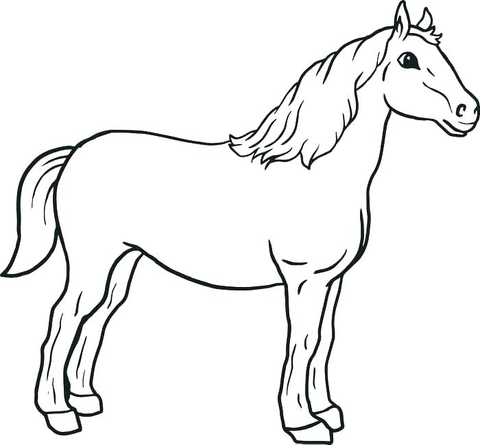 700x648 Horse Coloring Pages