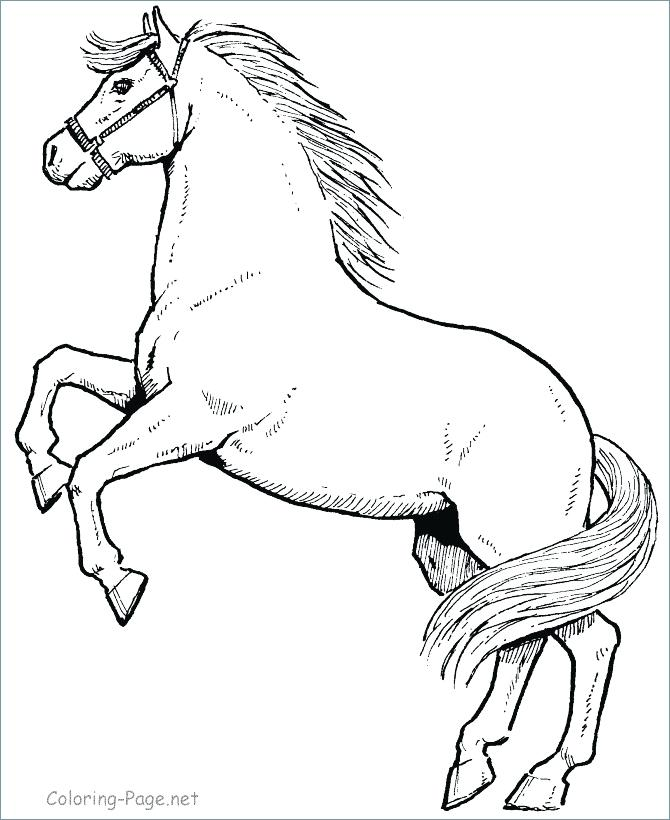 670x820 Beautiful Horse Coloring Pages