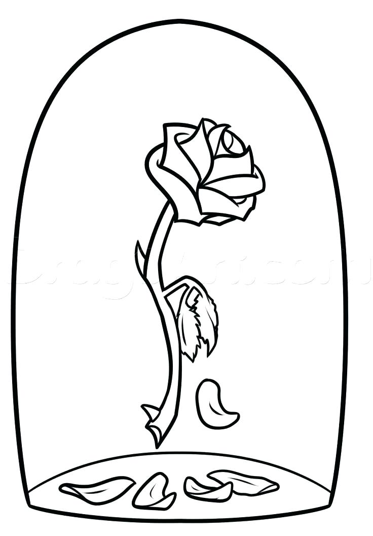 736x1055 Beauty And The Beast Coloring Pages Rose As Well As Rose Coloring