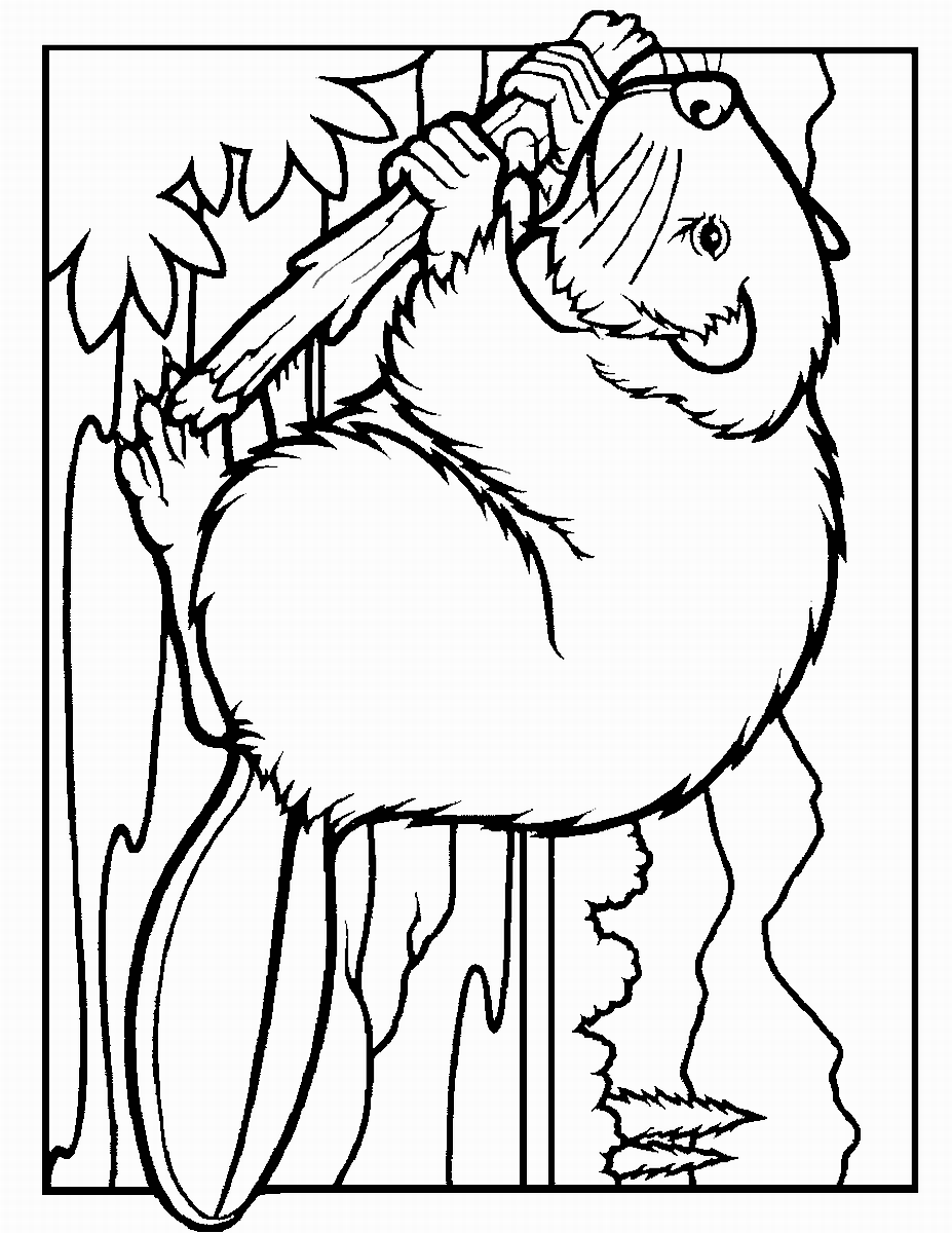927x1200 Beaver Coloring Pages