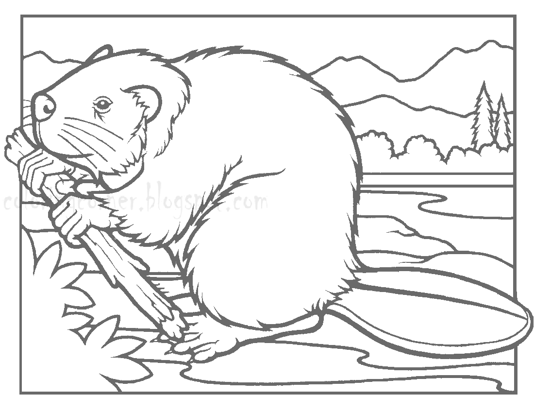 1100x850 Printable Beaver Coloring Page