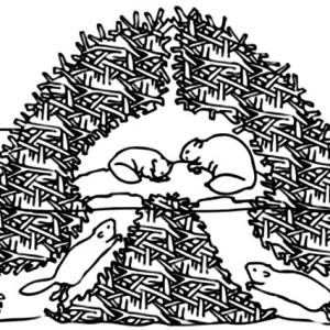 300x300 Brave Beaver Warrior Coloring Page Coloring Sun
