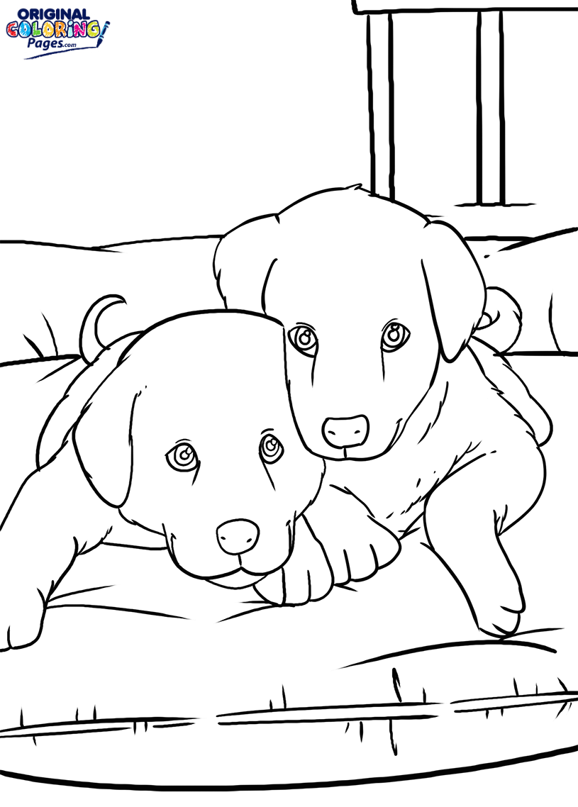 815x1138 Two Puppies On A Bed Coloring Page Coloring Pages Original