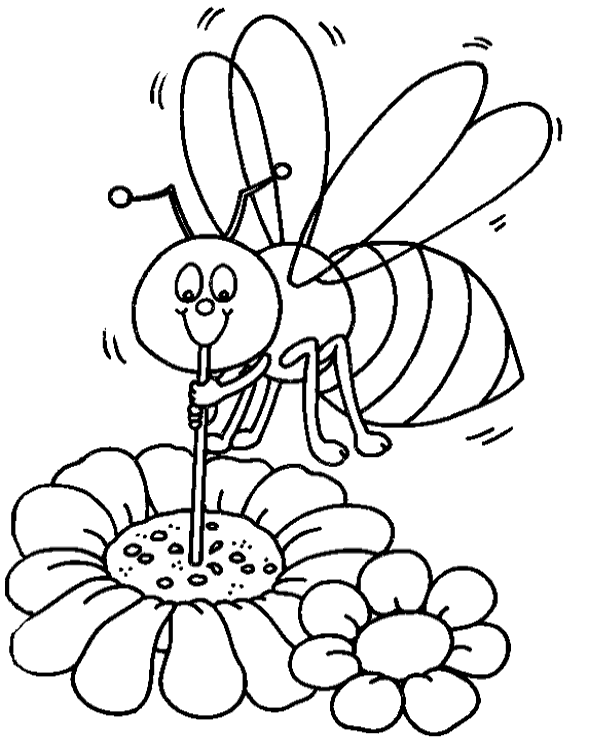 600x740 Bee Polutting Flower Coloring Page To Print Or Download For Free