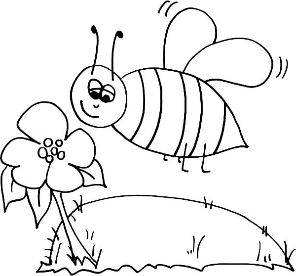 600x558 Bumble Bee Sniffing Flower Coloring Pages Best Place To Color