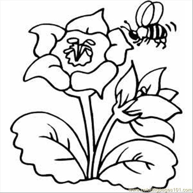 650x650 Flower With Bee Coloring Page
