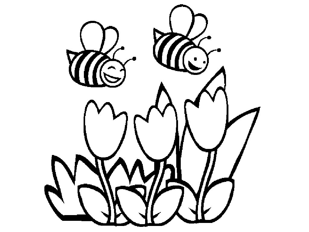 1024x768 Awesome Bumble Bee Coloring Pages Menmadehome Pic For Flower Trend