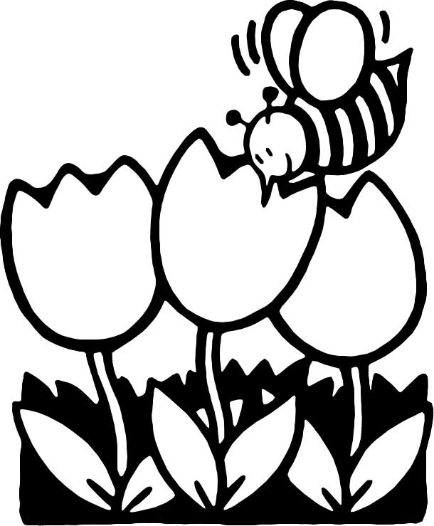 610x739 Bee Coloring Page For Kids