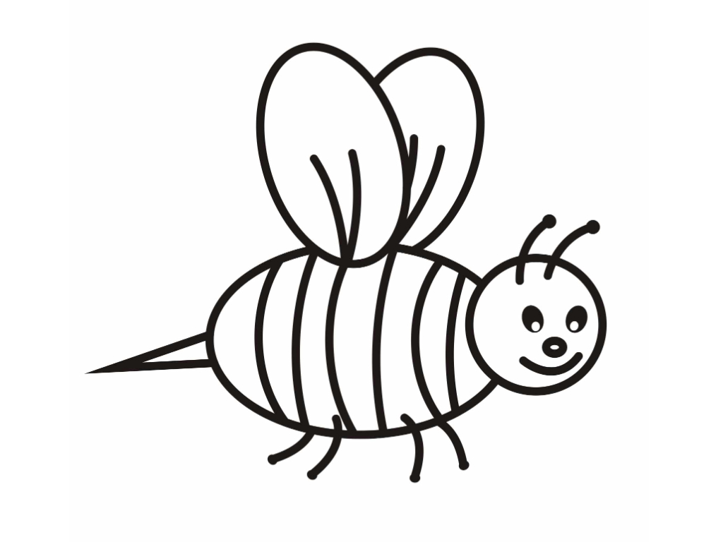1024x768 Bee Coloring Pages