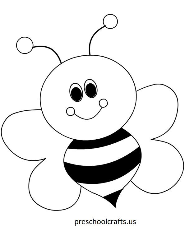 Bee Outline Drawing At Getdrawings Com