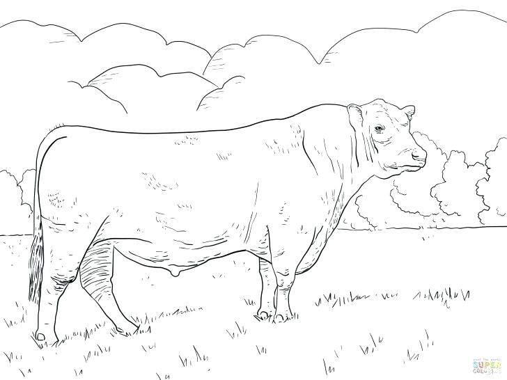 728x546 Coloring Pages Online Flowers Cattle Truck Page In Beef