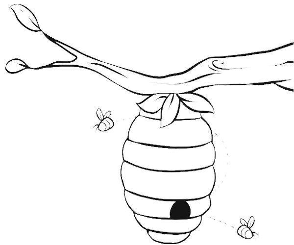 600x500 Bee Beehive Coloring Page Ha Beehive, Bees