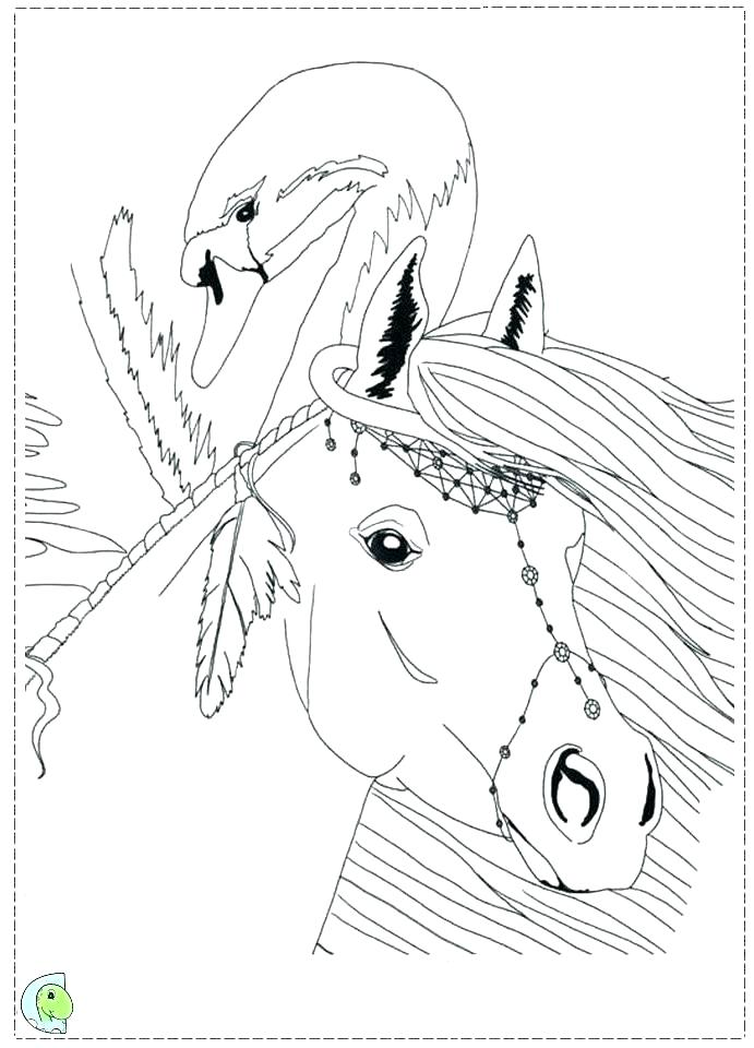 Bella Sara Coloring Pages at GetDrawings Free for