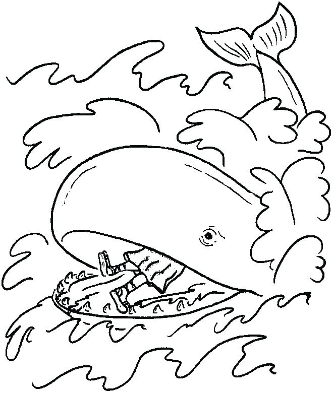 660x780 Whale Coloring Page Killer Whale Coloring Pages With Whale