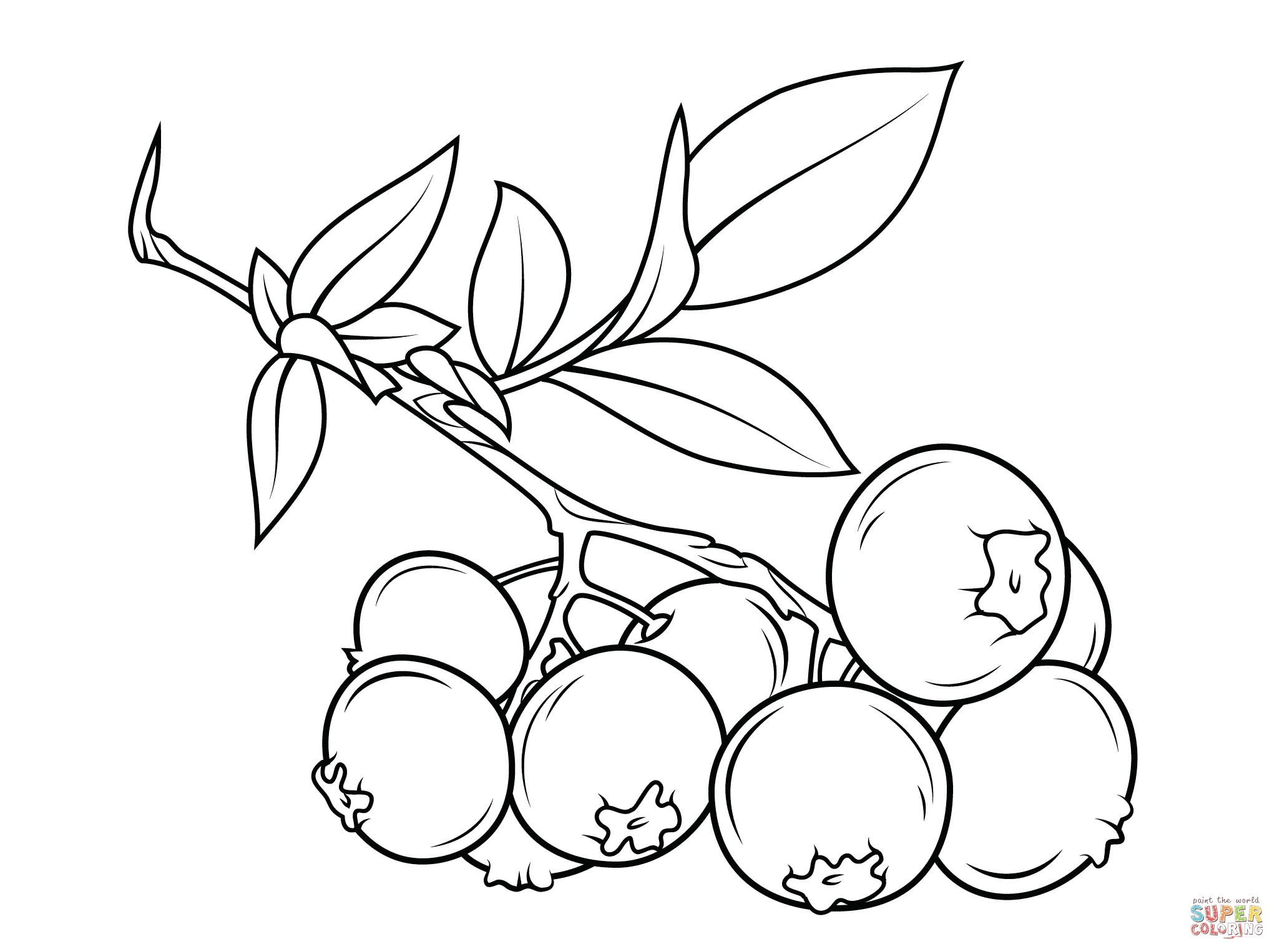 2046x1526 Grapes With Leaves Fruits And Berries Coloring Pages For Kids