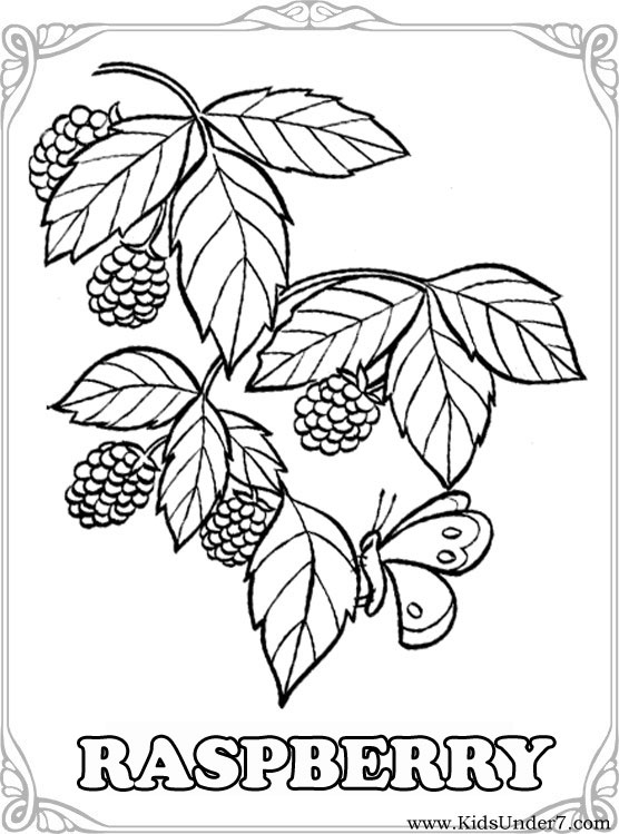 556x749 Kids Under Fruits And Berries Coloring Pages