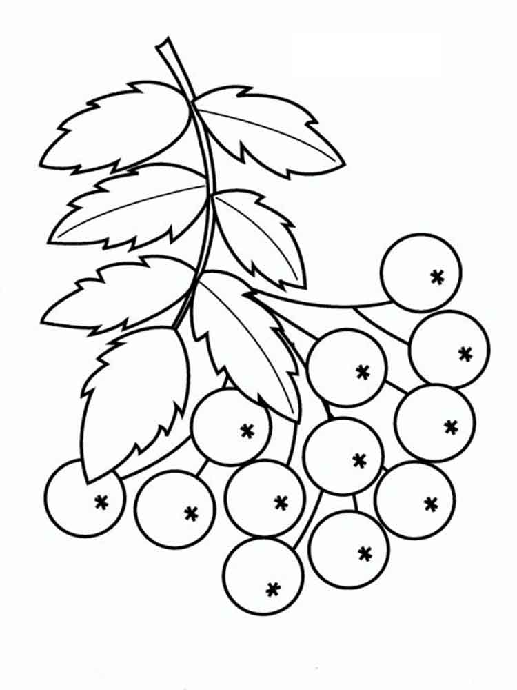 750x1000 Rowan Coloring Pages Download And Print Rowan Coloring Pages