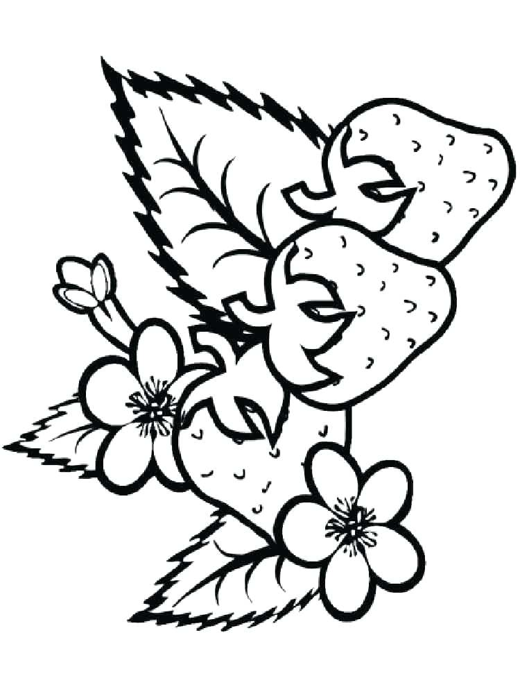 750x1000 Strawberry Coloring Picture Strawberry Berries Coloring Pages