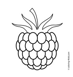236x248 Two Gooseberries Fruits And Berries Coloring Pages For Kids