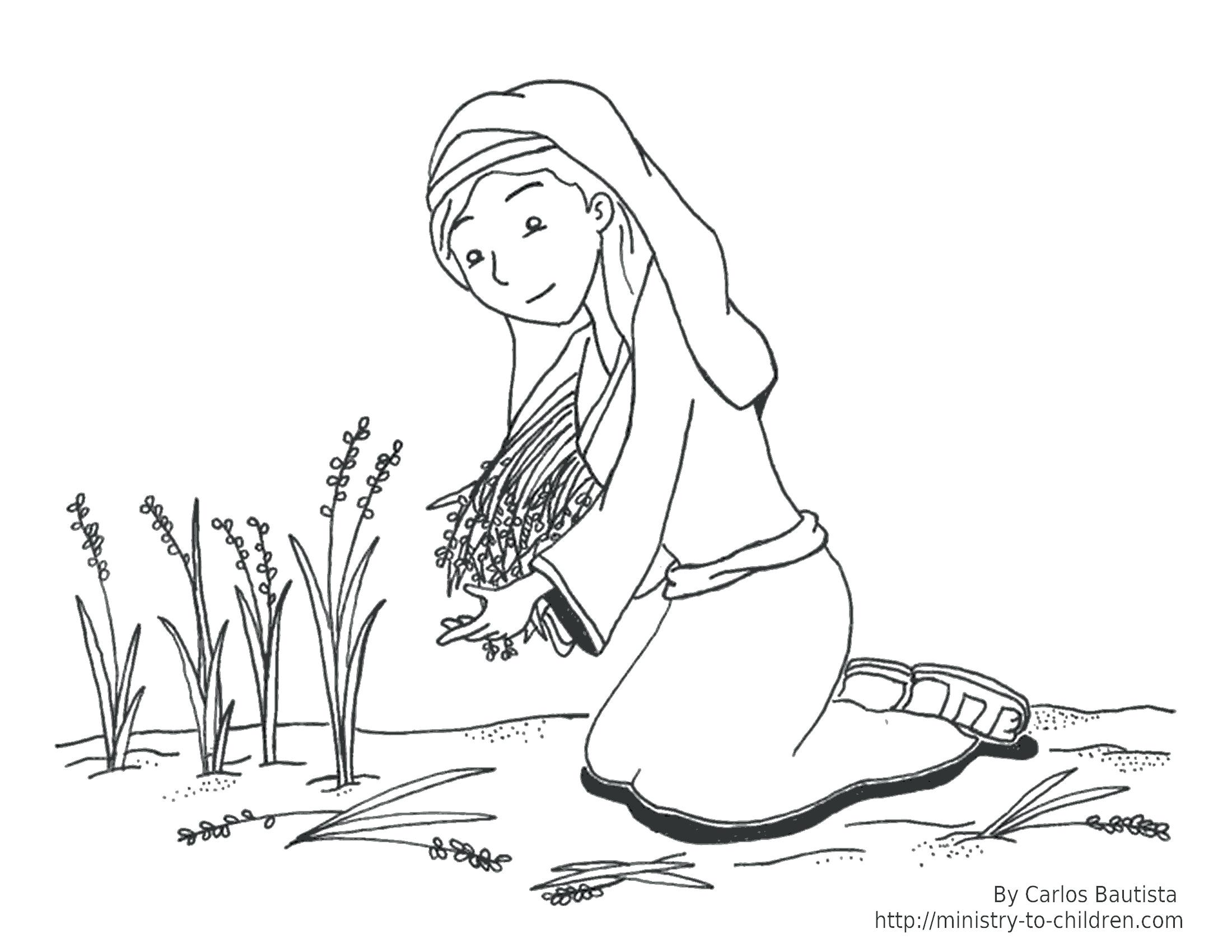2200x1700 Coloring Pages Flowers And Butterflies Bible Character Moses Story