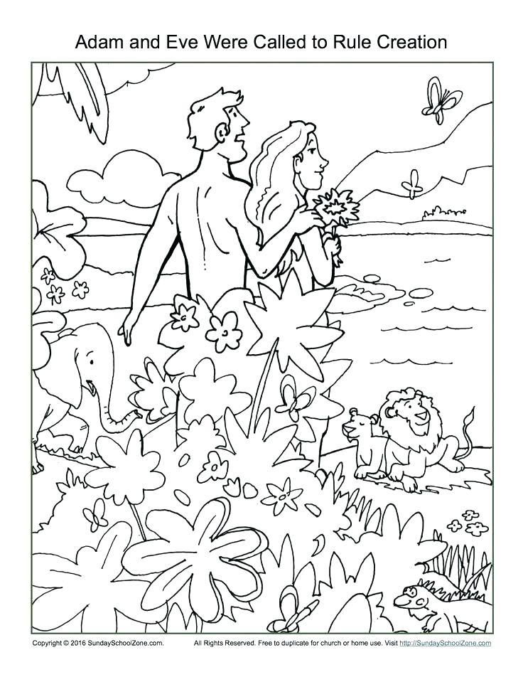 736x952 Bible Story Coloring Pages Bible Story Coloring Pages And Eve Were