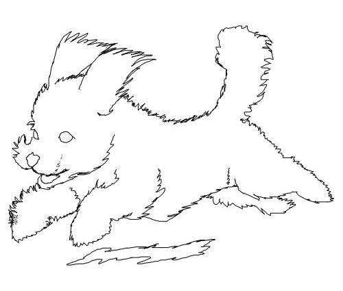 Bichon Frise Coloring Pages at GetDrawings com | Free for